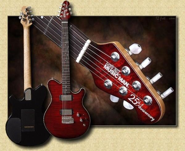 159124d1281972294-doku-ich-lasse-mir-eine-e-gitarre-zimmern-25th.jpg