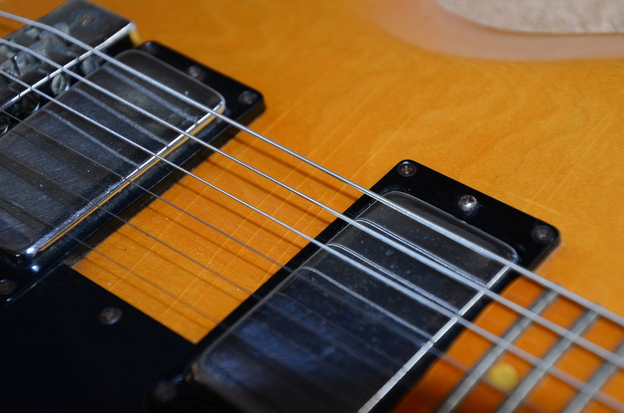 48 Gibson L6-S 1975 31.jpg