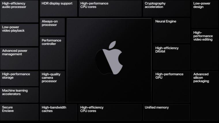 Apple [2289].jpg