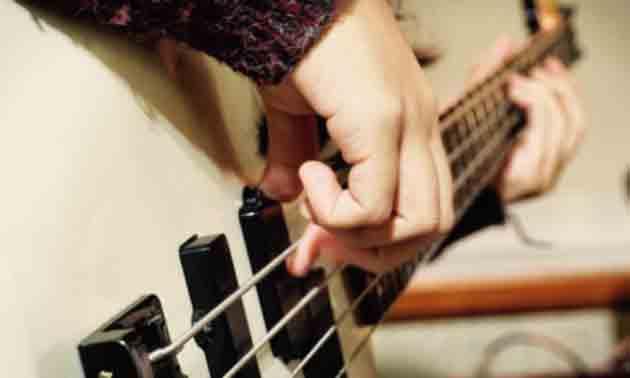 bass-fuer-einsteieger-finden
