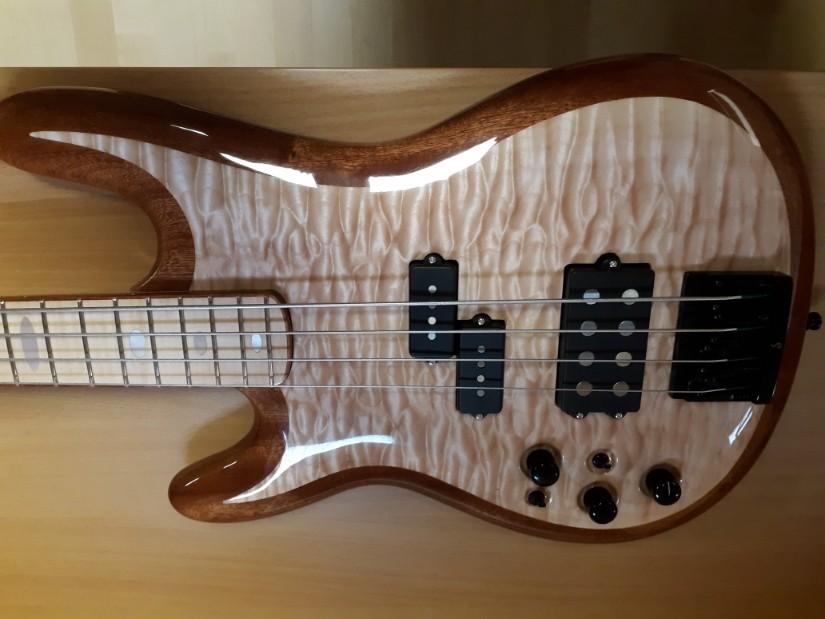 Bass_2.jpg