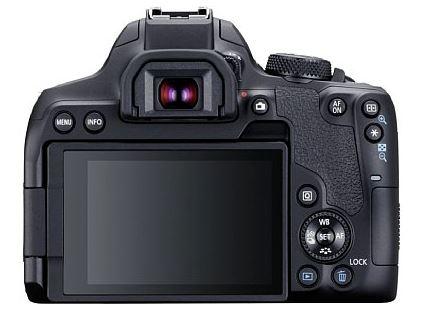 Canon EOS 850D 2[1799].jpg