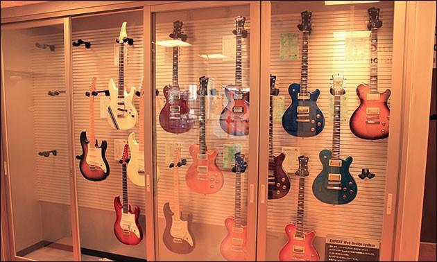 FGN Gitarrensammlung