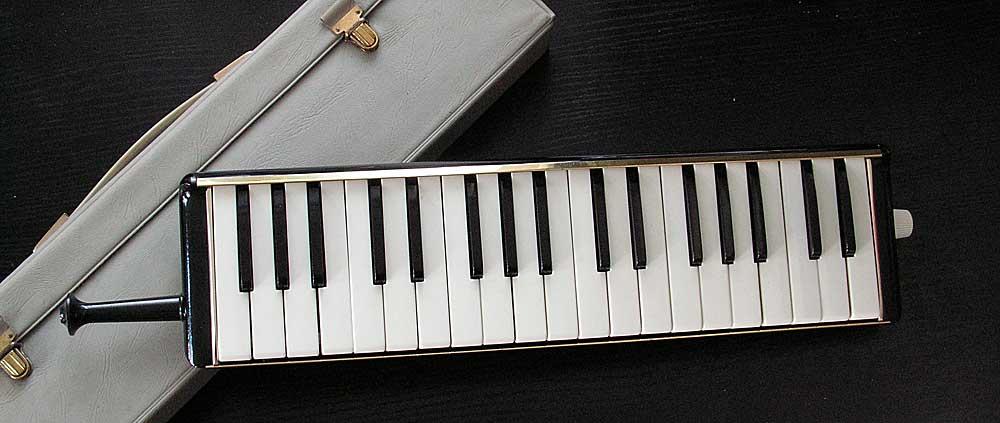 Hohner Melodic Piano 36.jpg