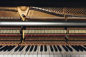 wieviel kann darf das klavierstimmen etwa kosten musiker board. Black Bedroom Furniture Sets. Home Design Ideas