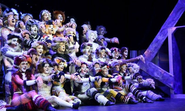 Cats performance musical