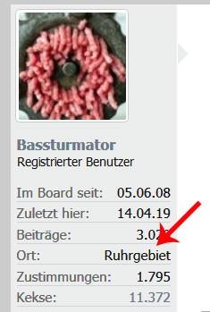 MuBo_Bassturmator_GitBau_Ruhrgeb.jpg