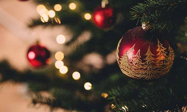 musiker-board-weihnachten-2018