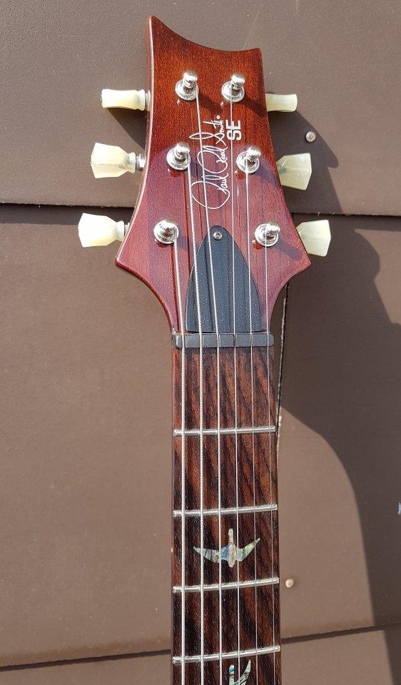 PRS SE Paul's Guitar 05_K.jpg