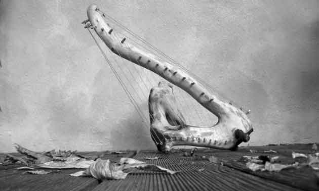 selbsbau-saitenisntrumente-holz-harfe