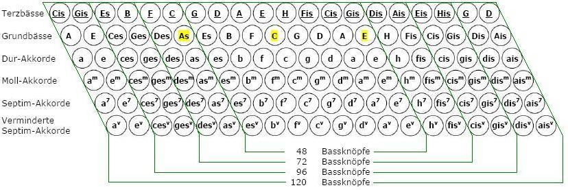 Standardbass1.jpg