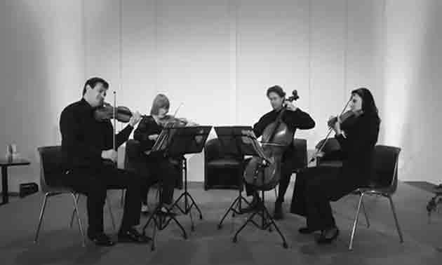streichquartett-live-session