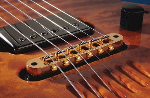 t-bridge-electric-acoustic-guitar-pickup-slide2.jpg