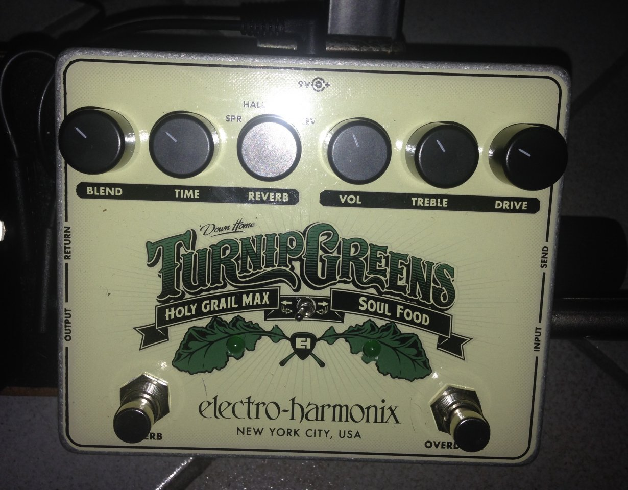 Turnip Greens.jpg