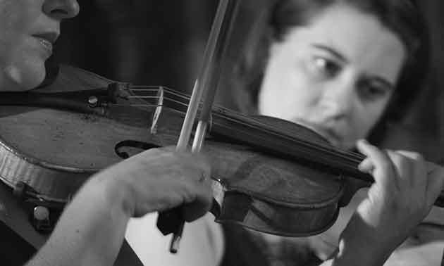 violine-verzerrung