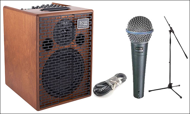 Gesangsanlage Mikrofon