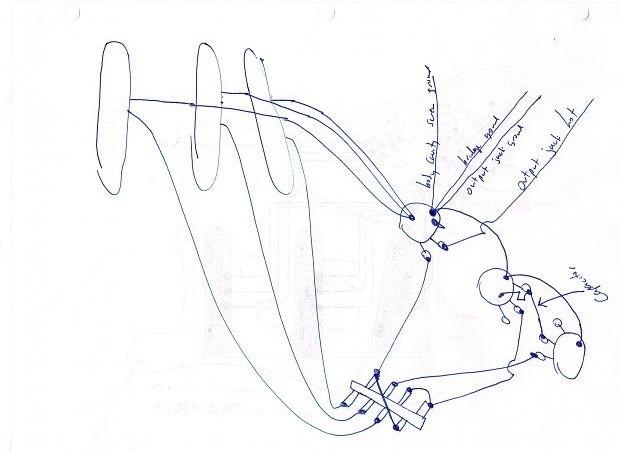 wiring-AM Dlx strat.jpg